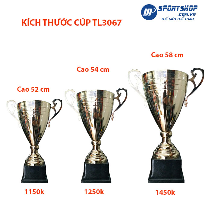 Kích thước cúp thể thao cao câp TL3067