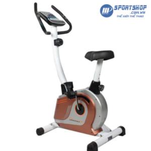 Xe đạp tập phục hồi chức năng D510